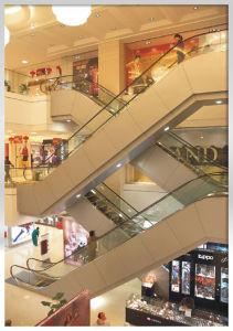 Home Escalator Traveller pictures & photos