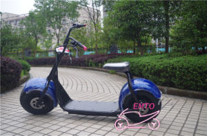 9.5inch Big Wheel Citycoco Two Wheel Electric Bike (harley electric scooter) pictures & photos