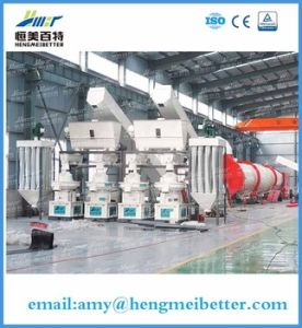 2.5-3t Wood Pellet Machine with High Capacity pictures & photos