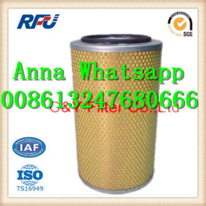 1902465 High Quality Air Filter for Iveco (1902465, 112294) pictures & photos
