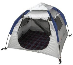 Cat Tent Dog Tent Pet Tent pictures & photos