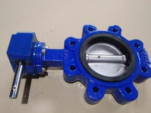 Bare Shaft Lugged Type Butterfly Valve pictures & photos
