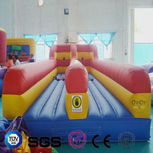 Coco Water Design Inflatable Toy LG9068 pictures & photos