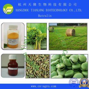 Good Quality Herbicide Butralin (95% TC, 36%EC, 48%EC) pictures & photos