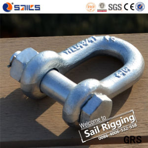 US Carbon Steel Screw Pin D Type Zinc Plated Shackles pictures & photos