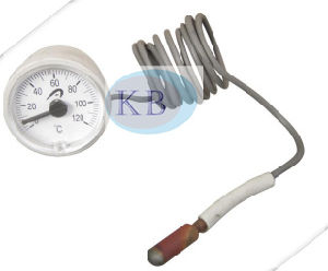Promotional Chemical Process Sillicon Oil-Filled Bimetal Thermometer for Cooking pictures & photos
