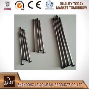 Iron Common Wire Nails pictures & photos