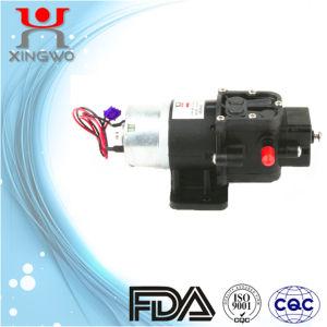 Hydraulic Water Pump Diaphragm Pump (DP005A2)