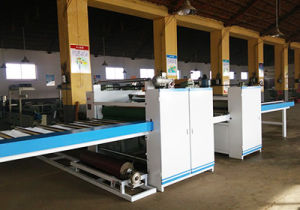 Wood Working Double Sides Automatic Laminator or PU Foam and CPP Film pictures & photos