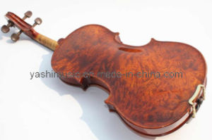 Advanced Varnished Violin (YSV012)