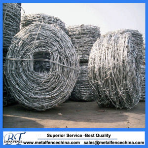 Hot-Dipped Galvanized Double Twist Razor Barbed Wire for Fram pictures & photos