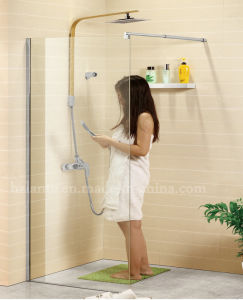 European Design Stainless Steel 8mm Glass Shower Room (LTS-021-1) pictures & photos