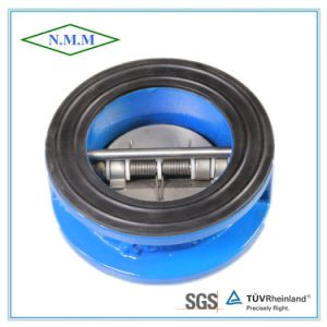 Cast Iron Wafer Type Double Disc Swing Check Valve pictures & photos