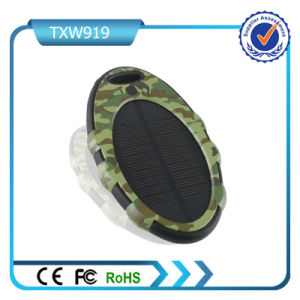 Oval 2 USB 5000mAh Solar Power Bank pictures & photos