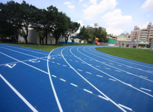 Iaaf Certified Huadong Track