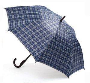 Checked Design Auto Open & Close Straight Umbrella for Men (LGUZ14017)