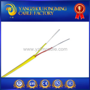 J Type Fiberglass Insulated Top Quality Thermo Cable pictures & photos