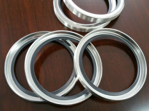 Stainless Steel Oil Seal, Ss PTFE Oil Seal, Ss Teflon Oil Seal, Ss Oil Seal pictures & photos