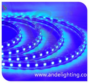 High Voltage SMD LED Square Rope Light pictures & photos