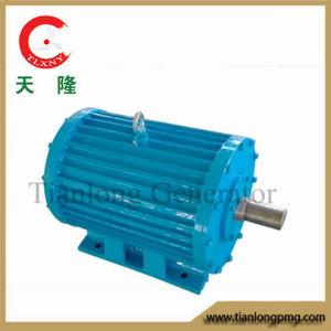 Ff-50kw/750rpm/AC380V Permanent Magnet Alternator (PMG/PMA/Hydro)