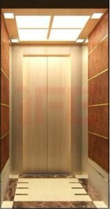 Elevator & Lift Home Lift (IFE-04)
