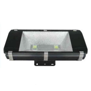 30W/50W/80W/100W/200W Floodlight LED with CE pictures & photos