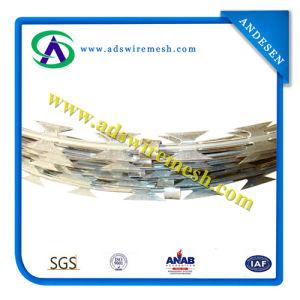 ISO9001 Galvanized Razor Wire Bto-22\Cbt-65\Razor Barbed Wire\Concertina Razor Wire pictures & photos