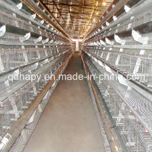 High Quality Automatic Chicken Coop Feeding Equipment pictures & photos