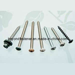 Pan Head Screw Self Tapping Screw pictures & photos