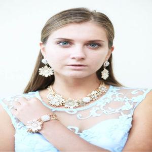 New Item Acrylic Stones Flower Fashion Jewellery Set Earring Bracelet Necklace pictures & photos