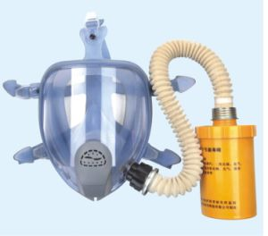 Middle Filter Gas Mask (9900E) pictures & photos