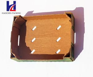 Environmental Fruit & Vegetable Corrugated Carton Paper packaging Packing Tray Box pictures & photos