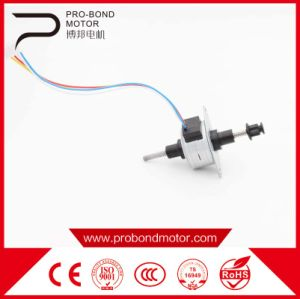 Quality High Precision Linear Electric Stepper DC Motors pictures & photos