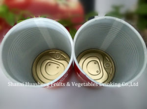 400g 28-30% Canned Tomato Paste pictures & photos