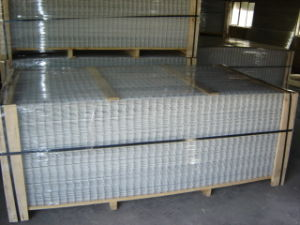 Electro Galvanized Welded Wire Mesh Panel pictures & photos