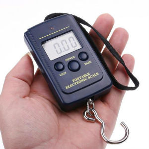 Qh Brand 10g-40kg Digital Hanging Luggage Fishing Weight Scale