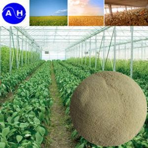 Liquid Calcium and Boron Amino Acid Chelated Fertilizer pictures & photos
