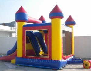 Inflatable Castles (B3009) pictures & photos
