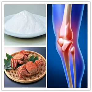 GMP Glucosamine HCl Powder pictures & photos