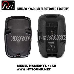 Class D Bi-Amplifiered Speaker (HYL-15AD)
