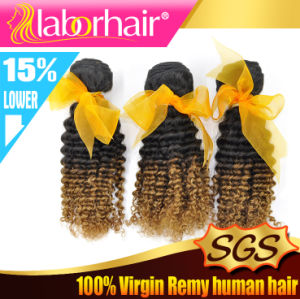 5A Hot Quality Ombre Hair Kinky Curl Ombre Human Hair Extension Lbh 115 pictures & photos