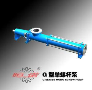 G Series Single- Screw Mono Slurry Pump pictures & photos