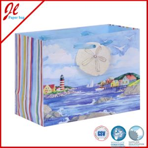Colorful Flower Gift Paper Bags Gift Shopping Bags pictures & photos