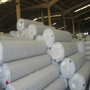 Polyester Plain Lawn Parties Carpet pictures & photos
