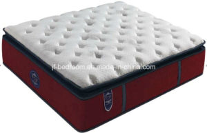 Memory Foam Mattress (WL301)