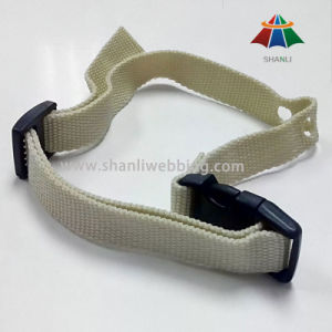 Best Price PP/ Polypropylene Material Pet Collar, Dog Collar pictures & photos