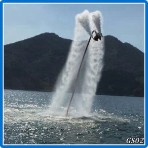 Cheap Water Flying Fly Board for Sale pictures & photos