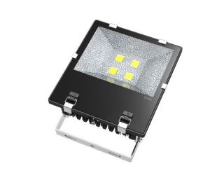 China Factory LED Flood Light / LED Flood Light Manufacture pictures & photos