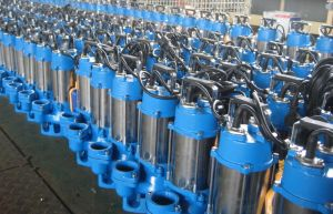 Sewage Pump (stainless steel pump with CE) pictures & photos