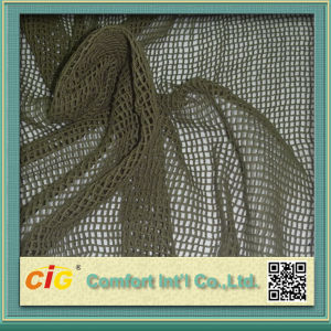 Mesh Fabric for 100% Polyetster pictures & photos
